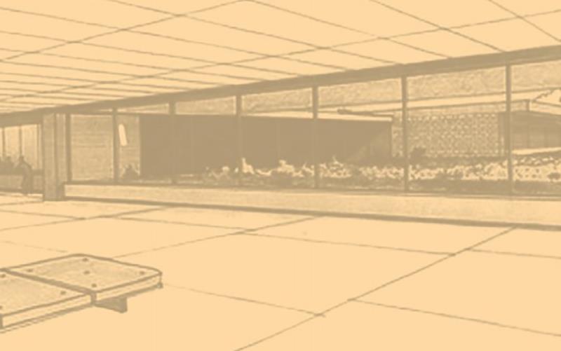 Apresentação da Coleção do CAMJAP (2008 – 2009)