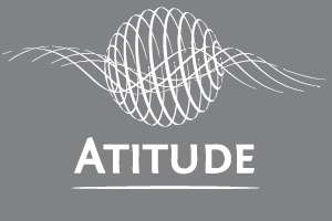 Atitude SSE Associação Pelo Desenvolvimento do Investimento Social