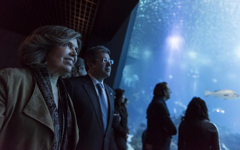 Assinatura De Protocolo Entre A FCG E A Fundação Oceano Azul