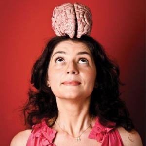 A complexidade do cérebro