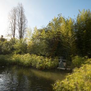 O Jardim como síntese da paisagem