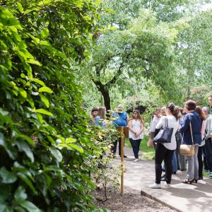 Uma farmácia no jardim — percursos entre plantas e medicamentos