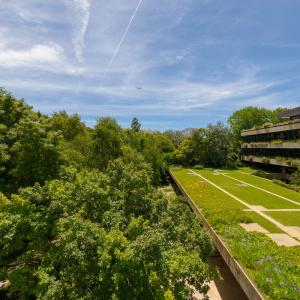 As coberturas-jardim do Edifício Gulbenkian