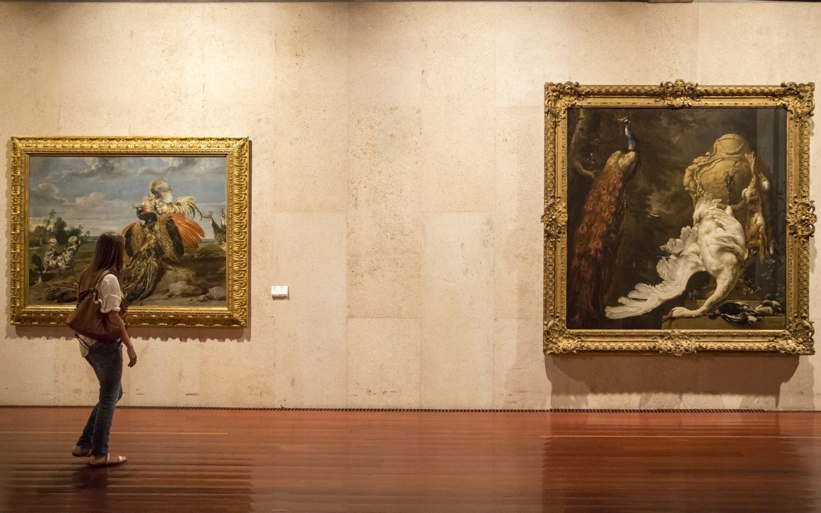 O Museu reabre ao público