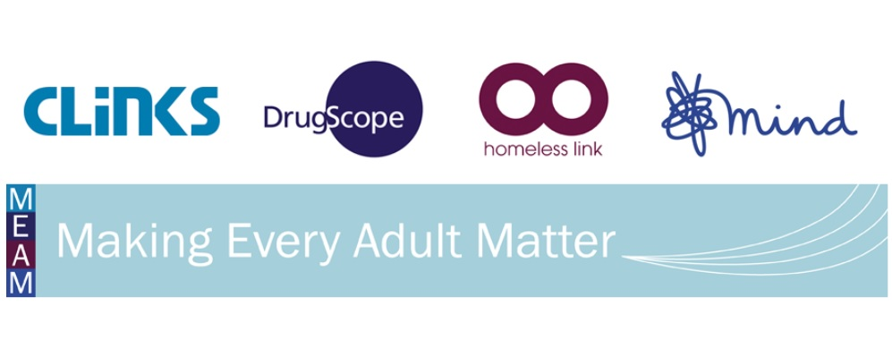 Making Every Adult Matter logo