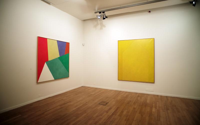 Angelo de Sousa, la couleur et le grain noir des choses