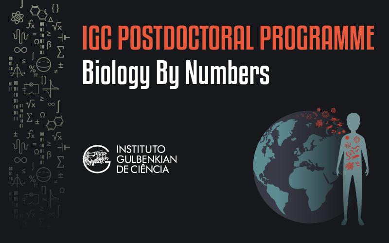 Programa multidisciplinar para doutorados nas áreas das ciências exatas e engenharia