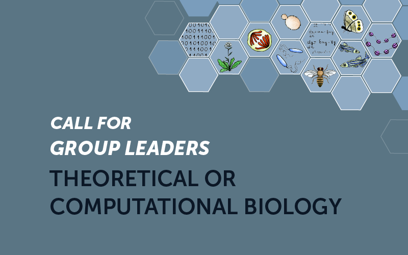 Position as Group Leader in Theoretical or Computational Biology