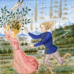 The Triumphs and Sonnets of Petrarch